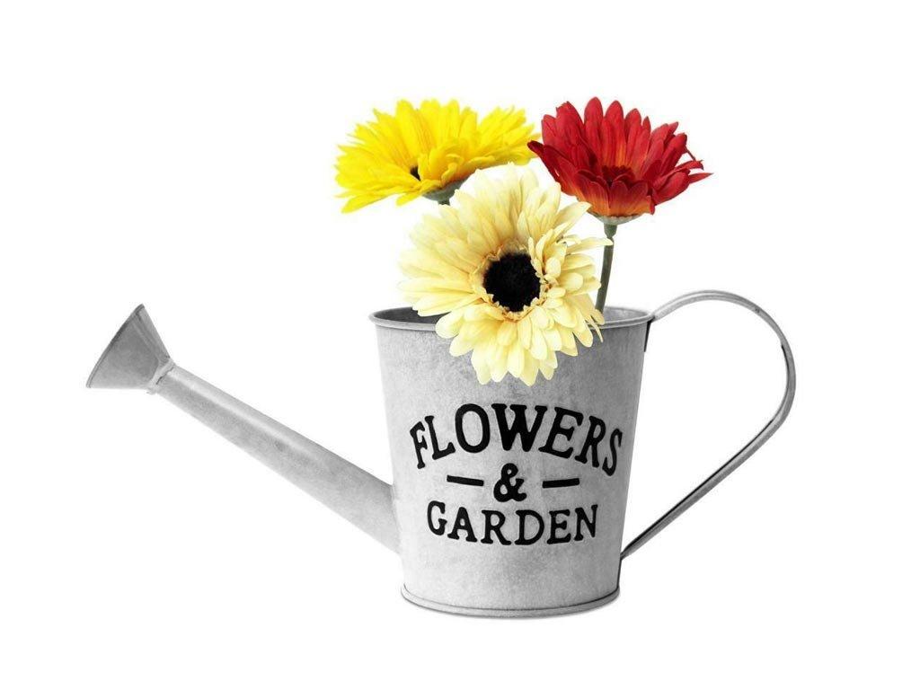 Μεταλλική Γλάστρα ποτιστήρι με ετικέτα Flower 37x14.5x15 cm, Flower Bucket