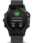 Garmin Smartwatch Fēnix 5 Slate grey with black band
