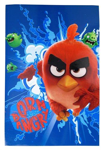 Angry Birds Τετράδιο Καρφίτσα B5 40 Φύλα Paxos 163660